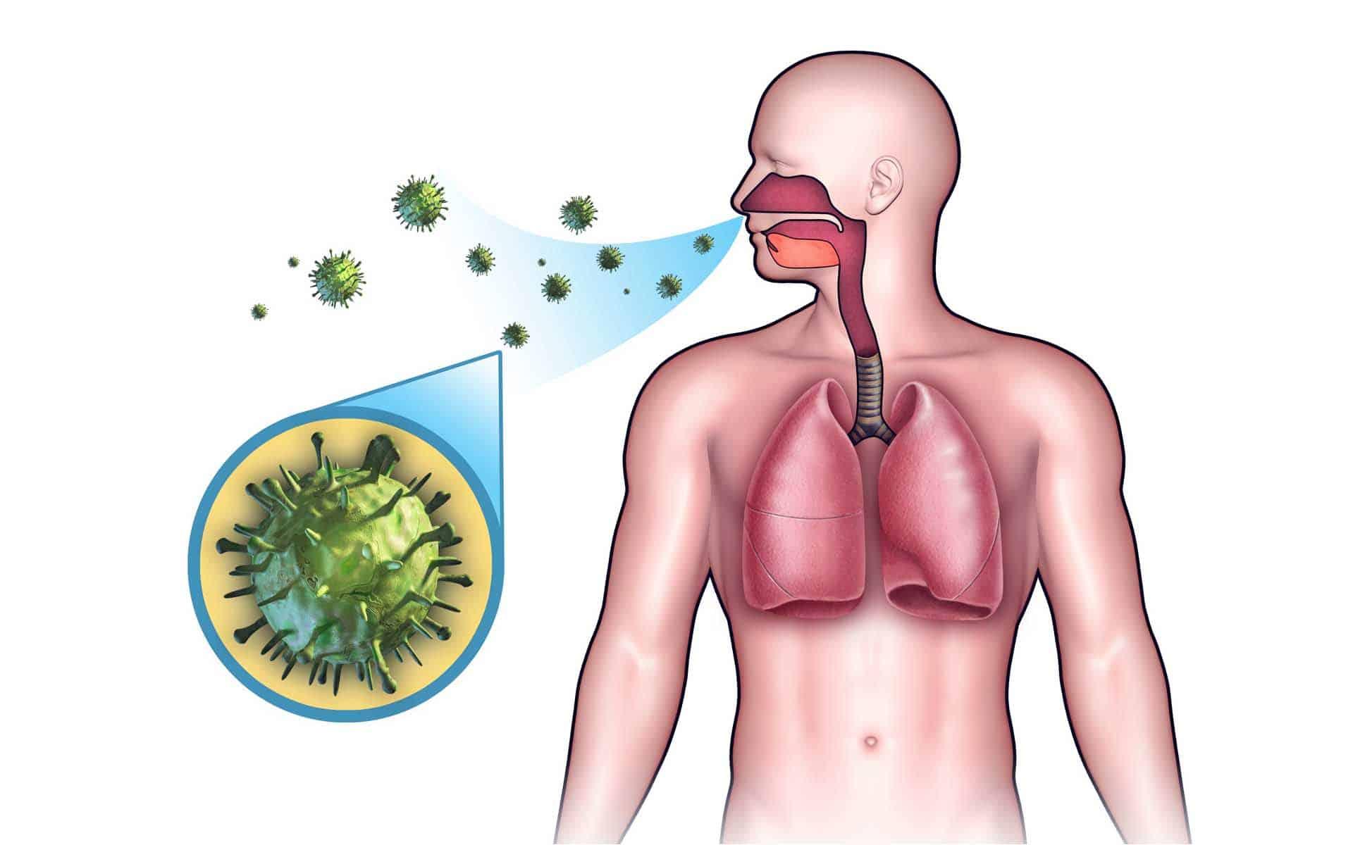 Как избавиться от туберкулёза