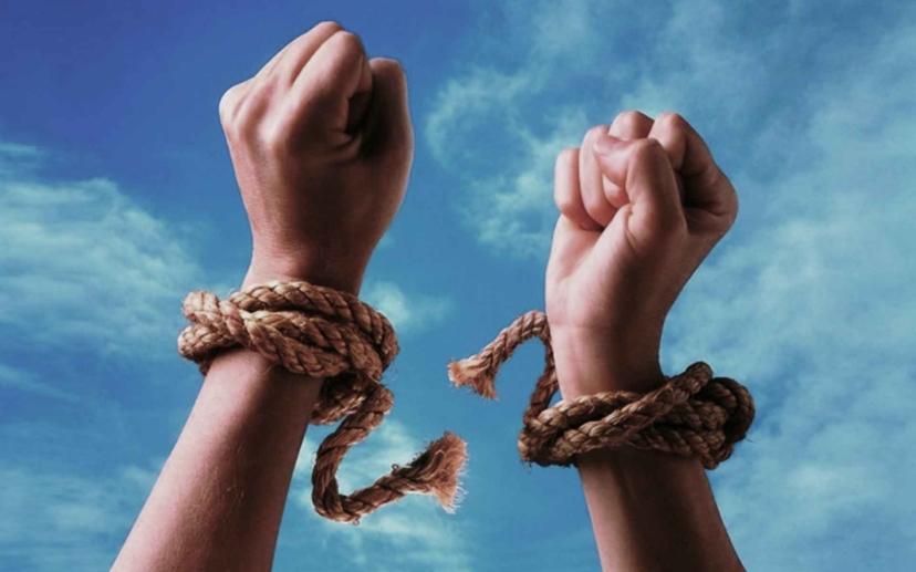 —Закон Свободы Воли  —  Закон Свободы Выбора