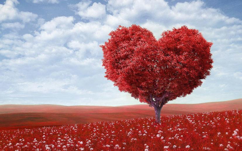 Онкология. Исцеление через сердце