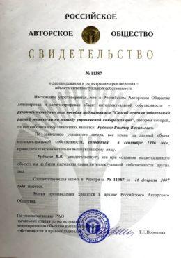 Свидетельство 2007